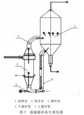 强制循环真空蒸发器